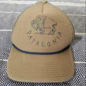 Patagonia Da Buffalo Master Chief Trucker Hat